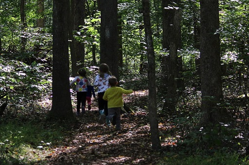 Four children playing on a trail in the woods