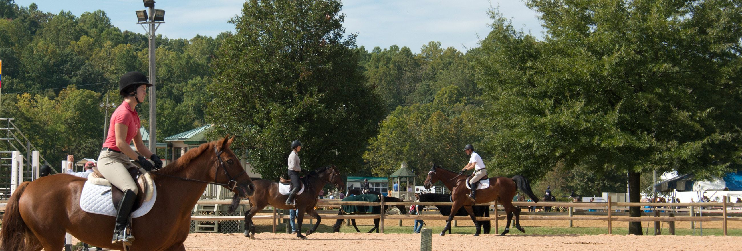 Show Place Arena Equestrian Center MNCPPC MD - 12 equestrian places in the us