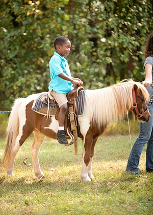 A young boy in a blue shirt riding a small pony on a sunny day