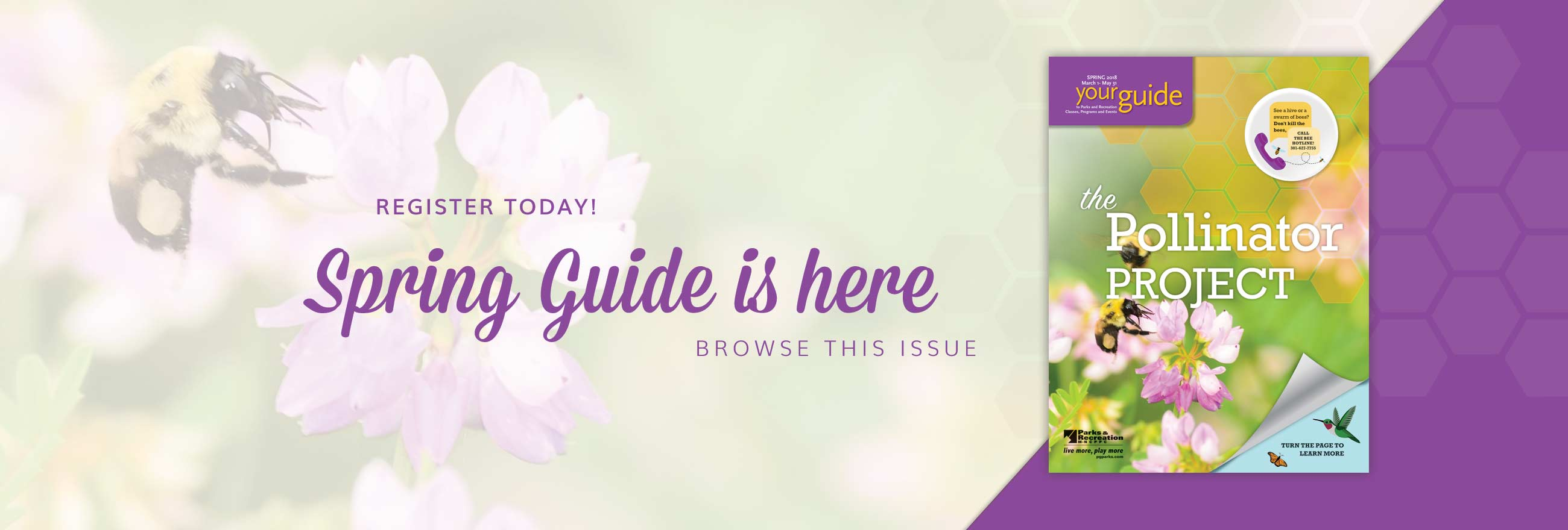 spring guide is here banner