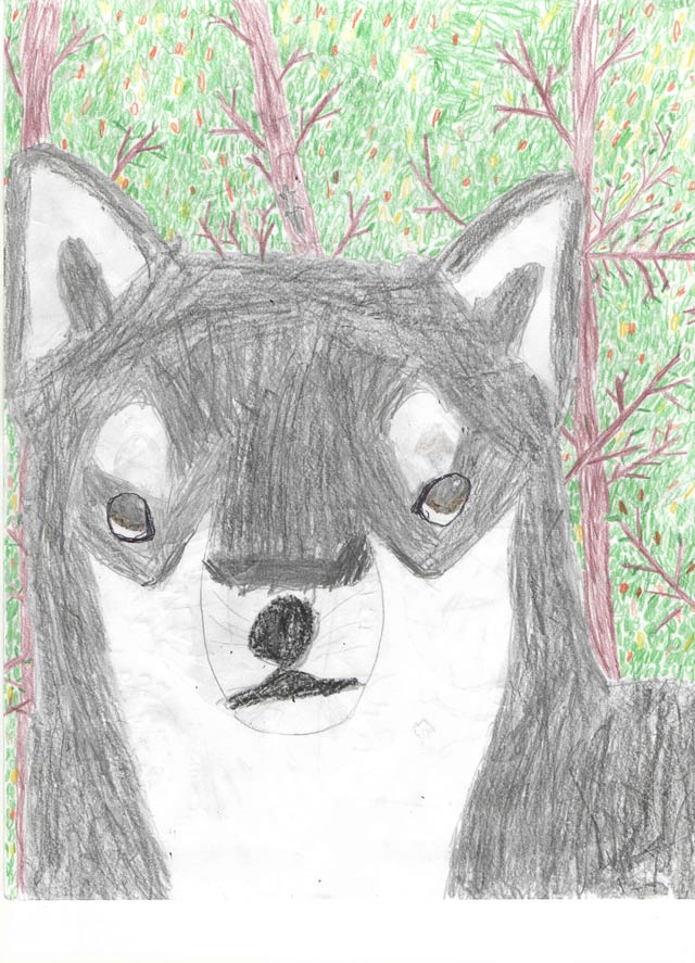 A drawing of a dog in the forest by Ana Lucia SJ