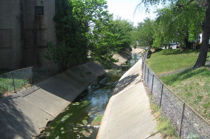 Main Channelized Stream Behind St. Benard's Church