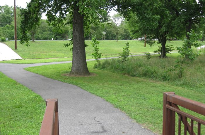 Walking Path Leading to Northeast Branch River and Trail