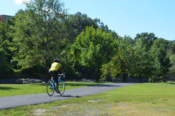 Bicyclist on Northeast Branch Trail