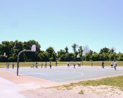 Lake Arbor Basketball Court