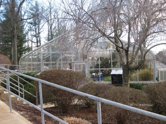 Greenhouse by side walk and trees